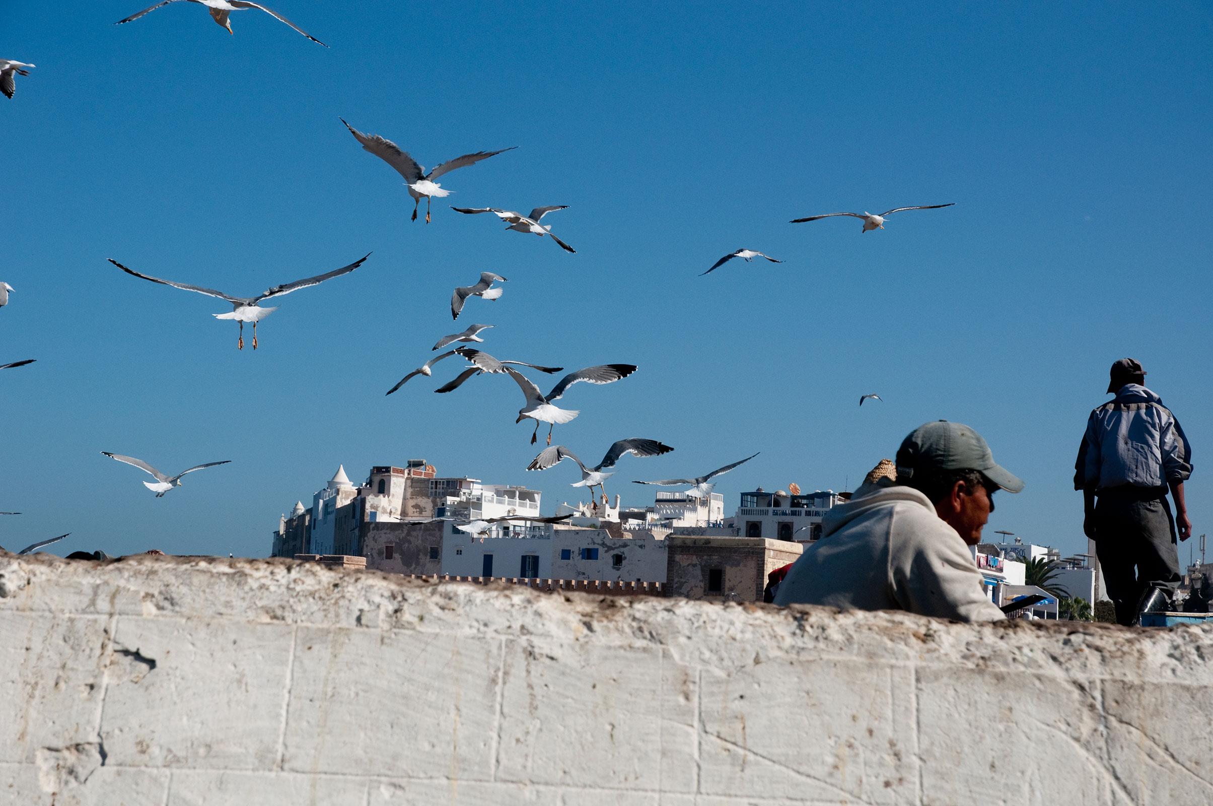 Marokko oktober 2013